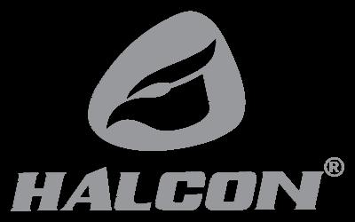 halcon_